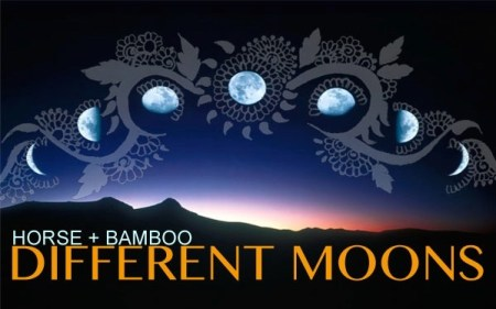 Different Moons logo by Habiba Shenza, Bob Frith and NASA.