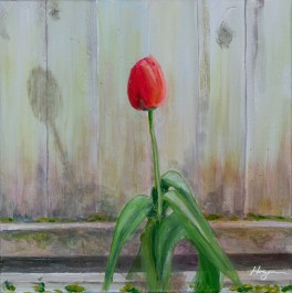 """Morning Tulip"": Original SOLD/Canvas mounted print available"