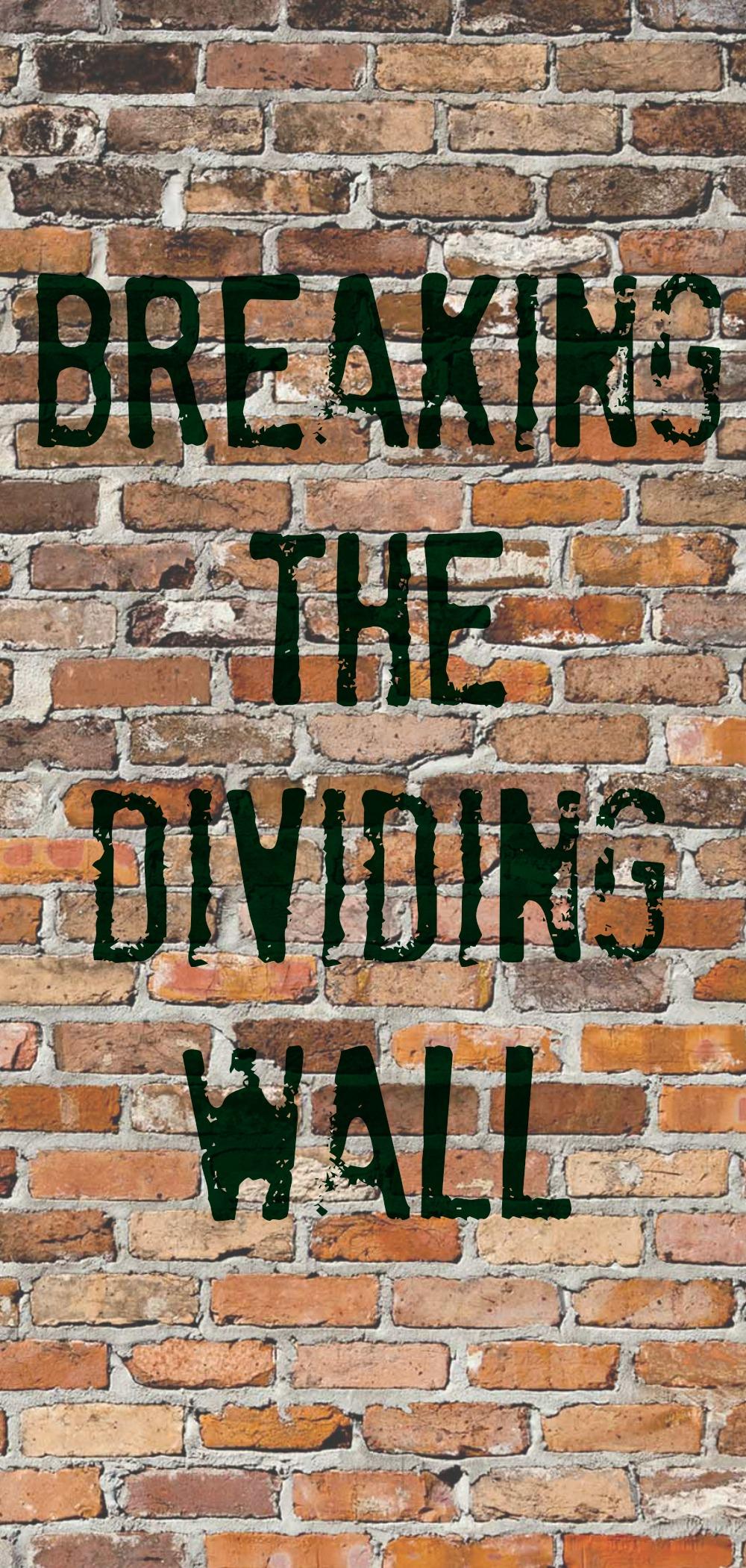 Image result for walls dividing people