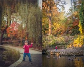 Fall 2013 family photos