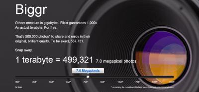 Ciężki wybór: Google Albums vs Flickr
