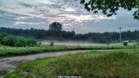 Poranne mgly w pobliżu rzeki Wełna