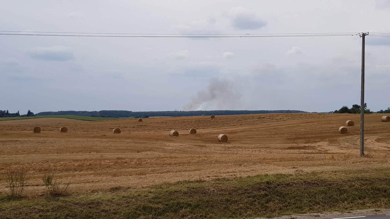 Pożar wokolicy Starogardu Gdańskiego