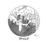 day-8-dwalin