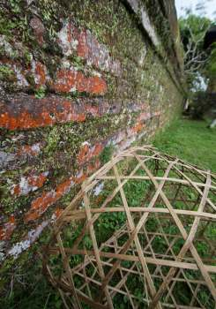 Basket-with-Brick-Wall-and-Moss