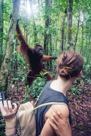 Borneo_-118