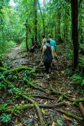 Borneo_-722