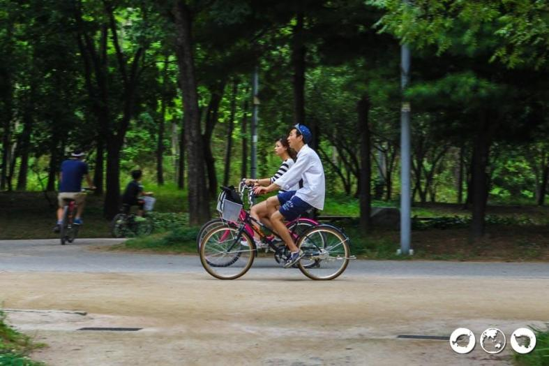 Seoul Forest Bike Rental