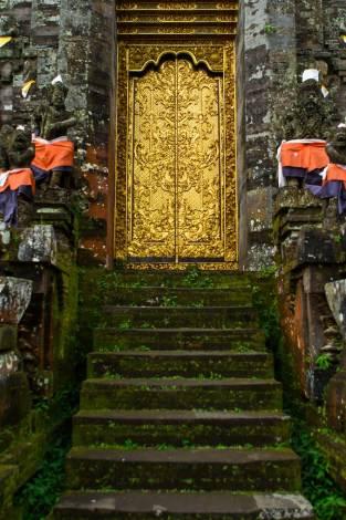 Beautiful Golden Doors