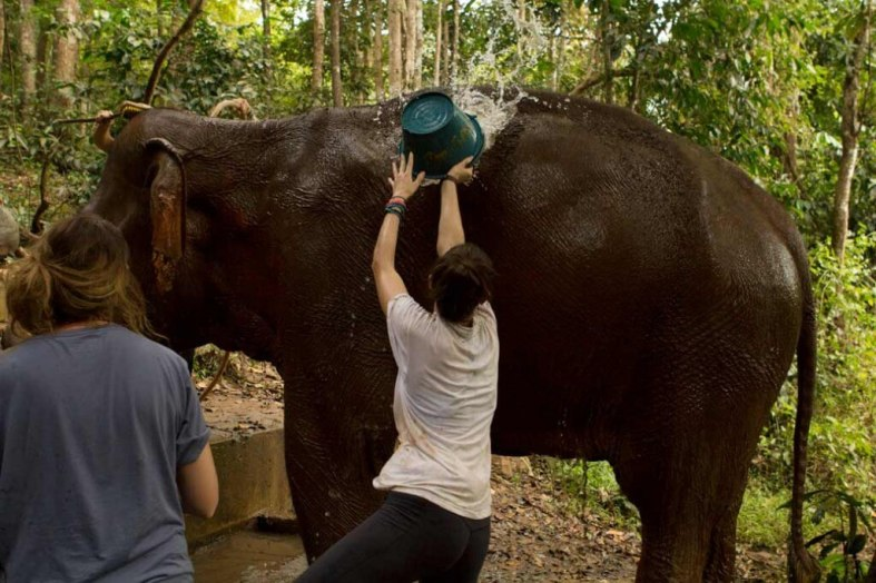 Megan-Splashing-Bucket-on-Elephant