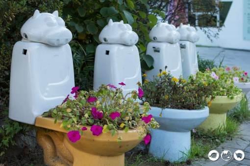 Toilet-Planters
