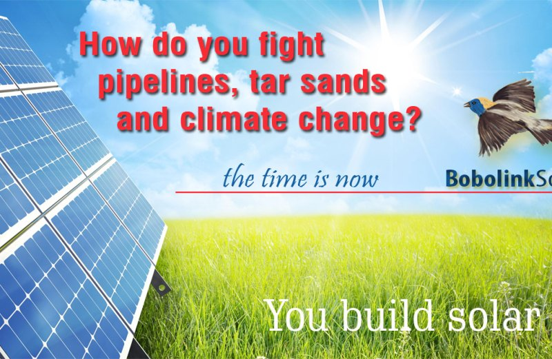 How do you fight climate change?