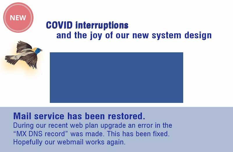 COVID interruptions