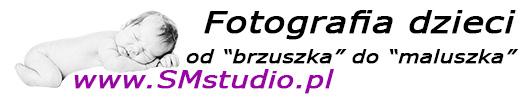 smstudio_banner-527x100
