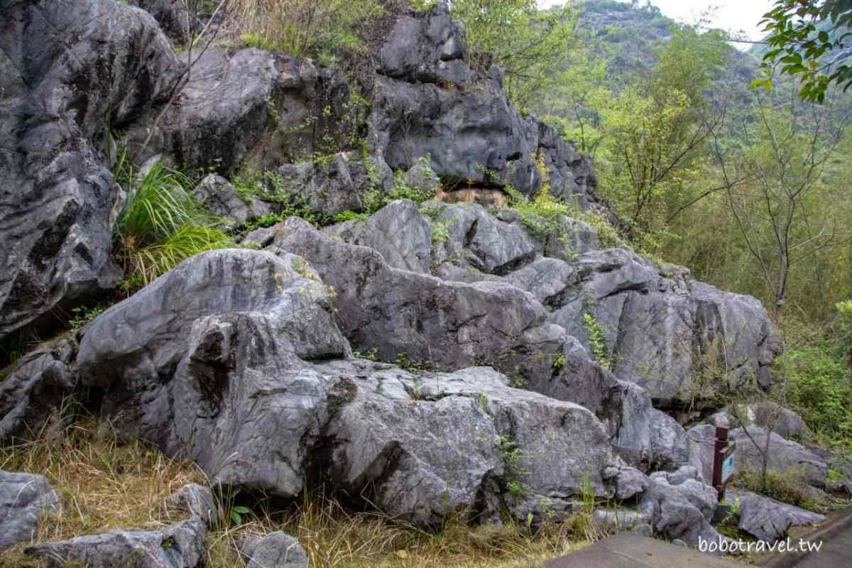 三衢石林06