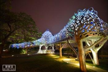 嘉義晚上去哪玩 | 蘭潭風景區水舞燈光秀、月影潭心燈光裝置藝術,最熱門的IG打卡地點