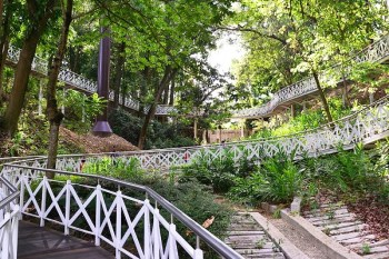 嘉義竹崎親水公園》嘉義森林天空步道~漫步花仙子森林步道 穿梭在樹之巔的天空廊道