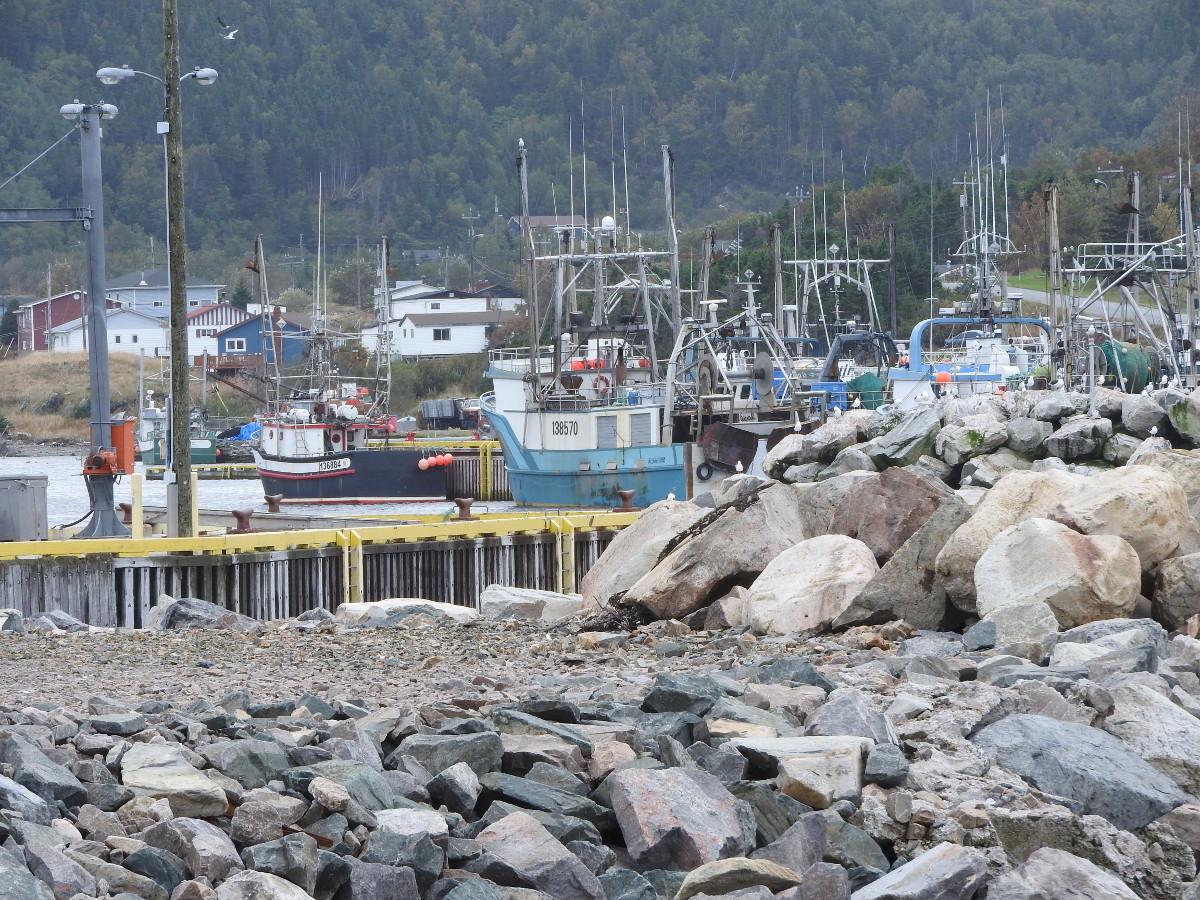 La Scie Newfoundland Tourist Information