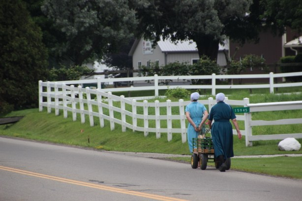 Business is good in Amish country