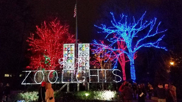 Down the block from the pizza place assault weapon incident, kids were cramming into the National Zoo for Zoo Lights. Wish we were just talking about that (Bob Sullivan photo)  google-site-verification: googlef6d4feef63e1b5fc.html