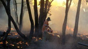 bushfires-hot-early