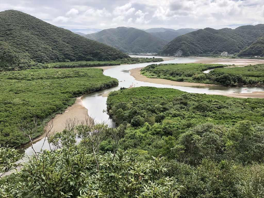 奄美大島マングローブの森