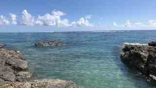 奄美大島でひとりダイビング