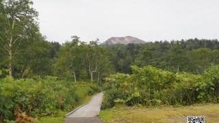 勇駒別湿原散策ハイキング