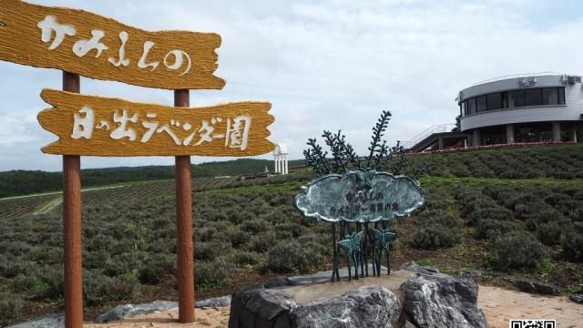 上富良野 日の出公園 ラベンダー発祥の地