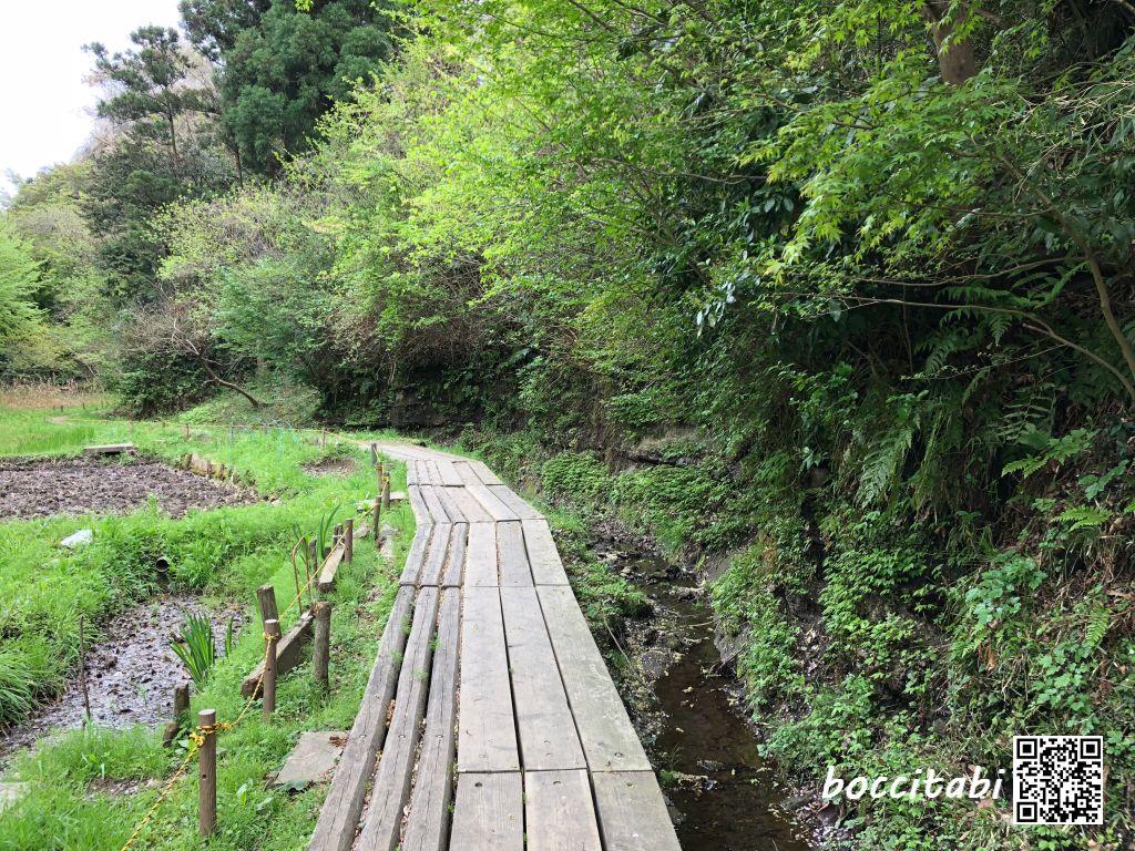 荒井沢市民の森散策コース