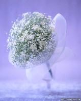 White flowers 6
