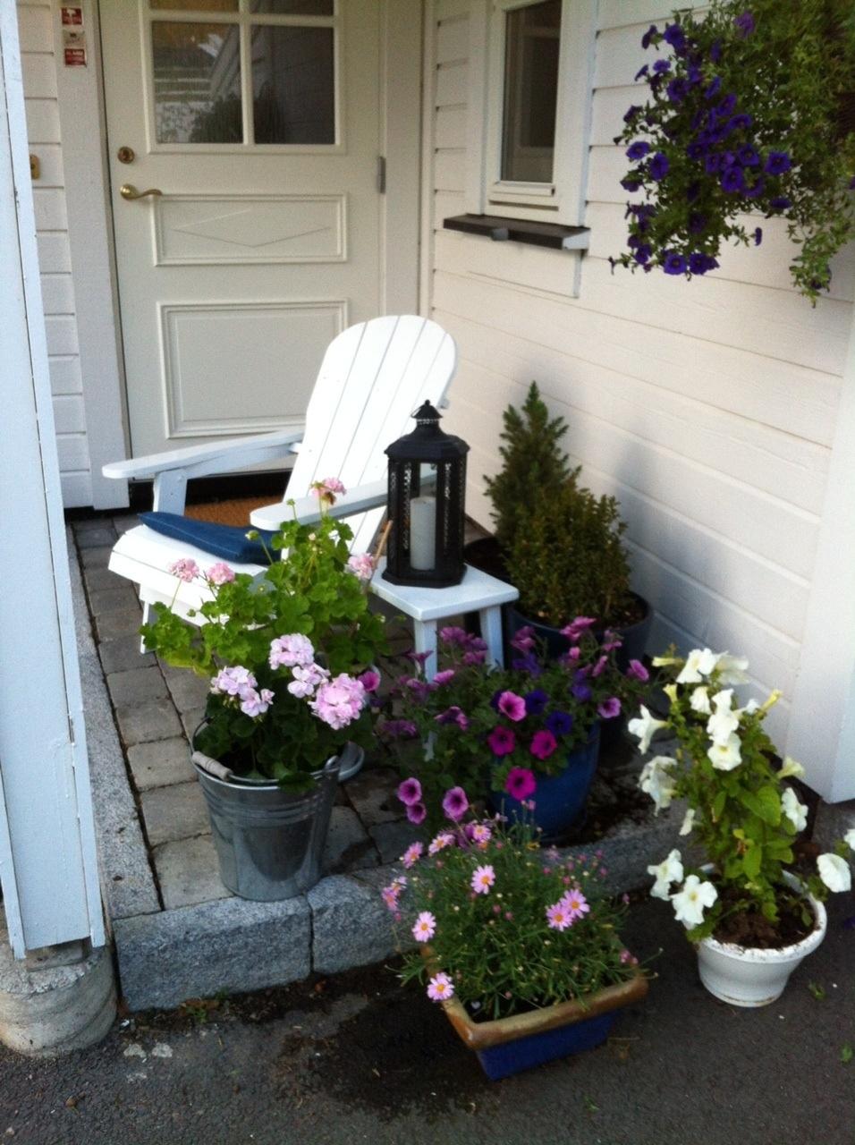 Blomster i krukker – Bodils lille blogg