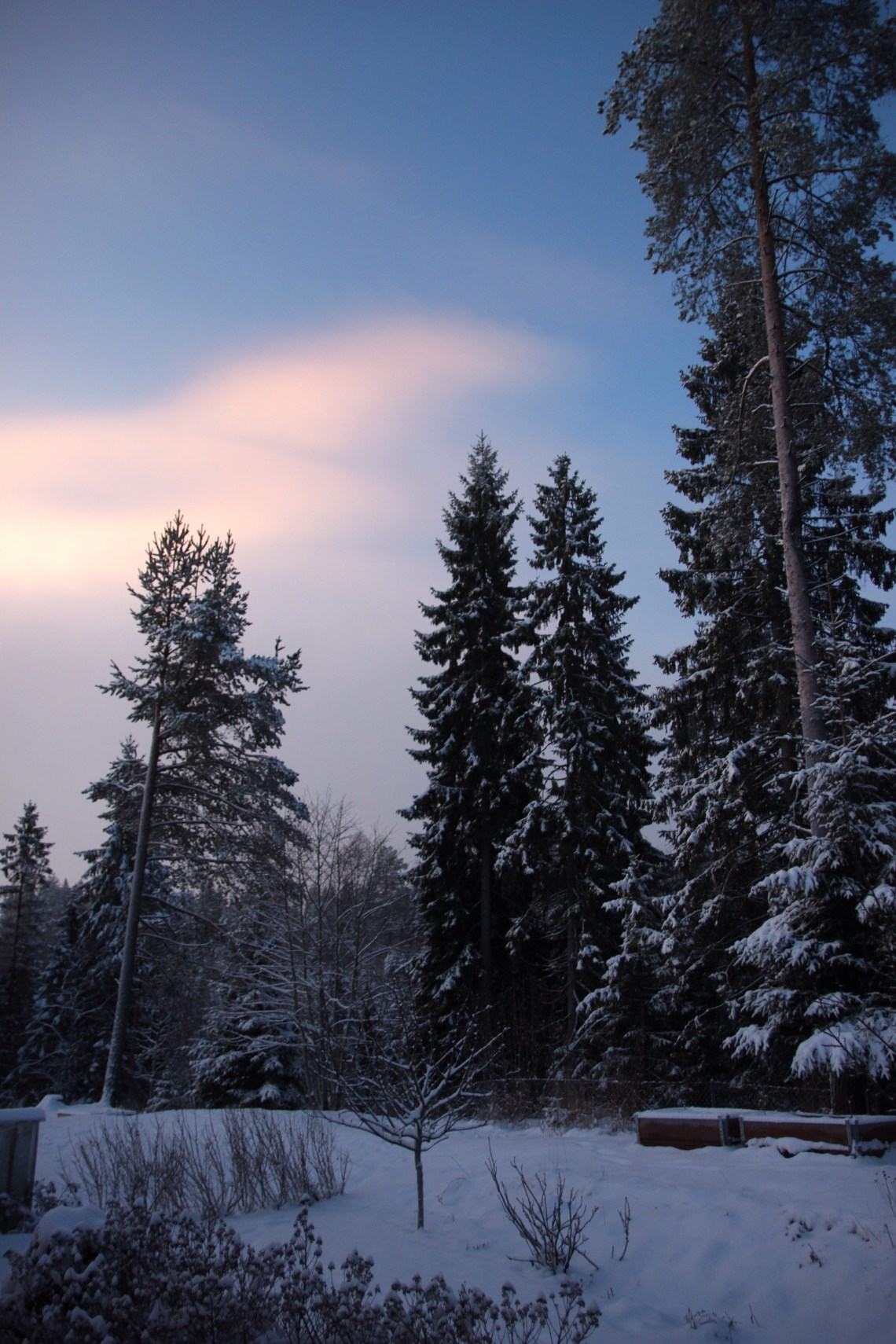 2014/12/img_1675-0.jpg
