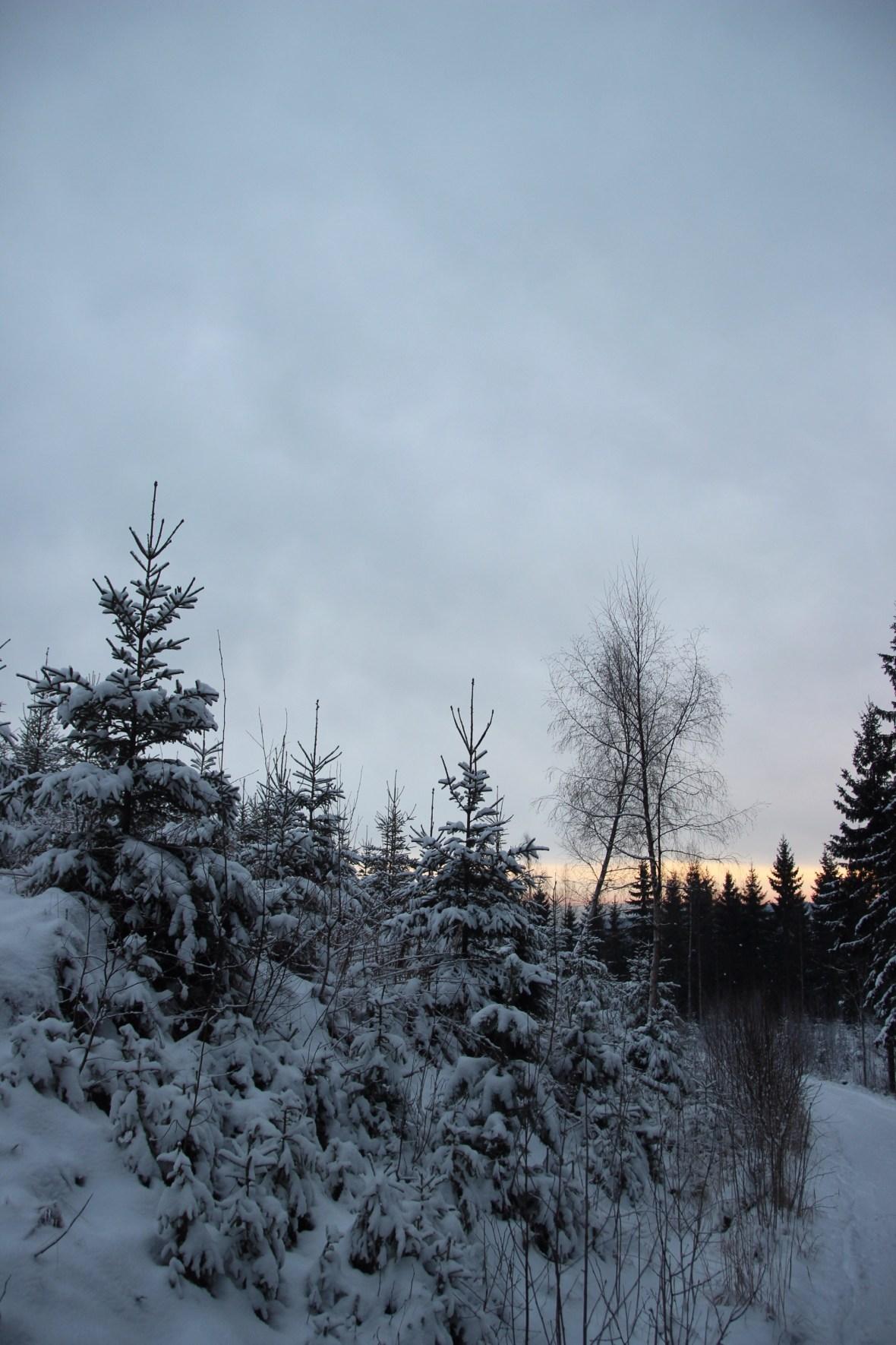 2014/12/img_1744-1.jpg