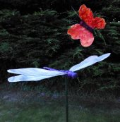 Marilyn Smith Dragonfly and butterfly