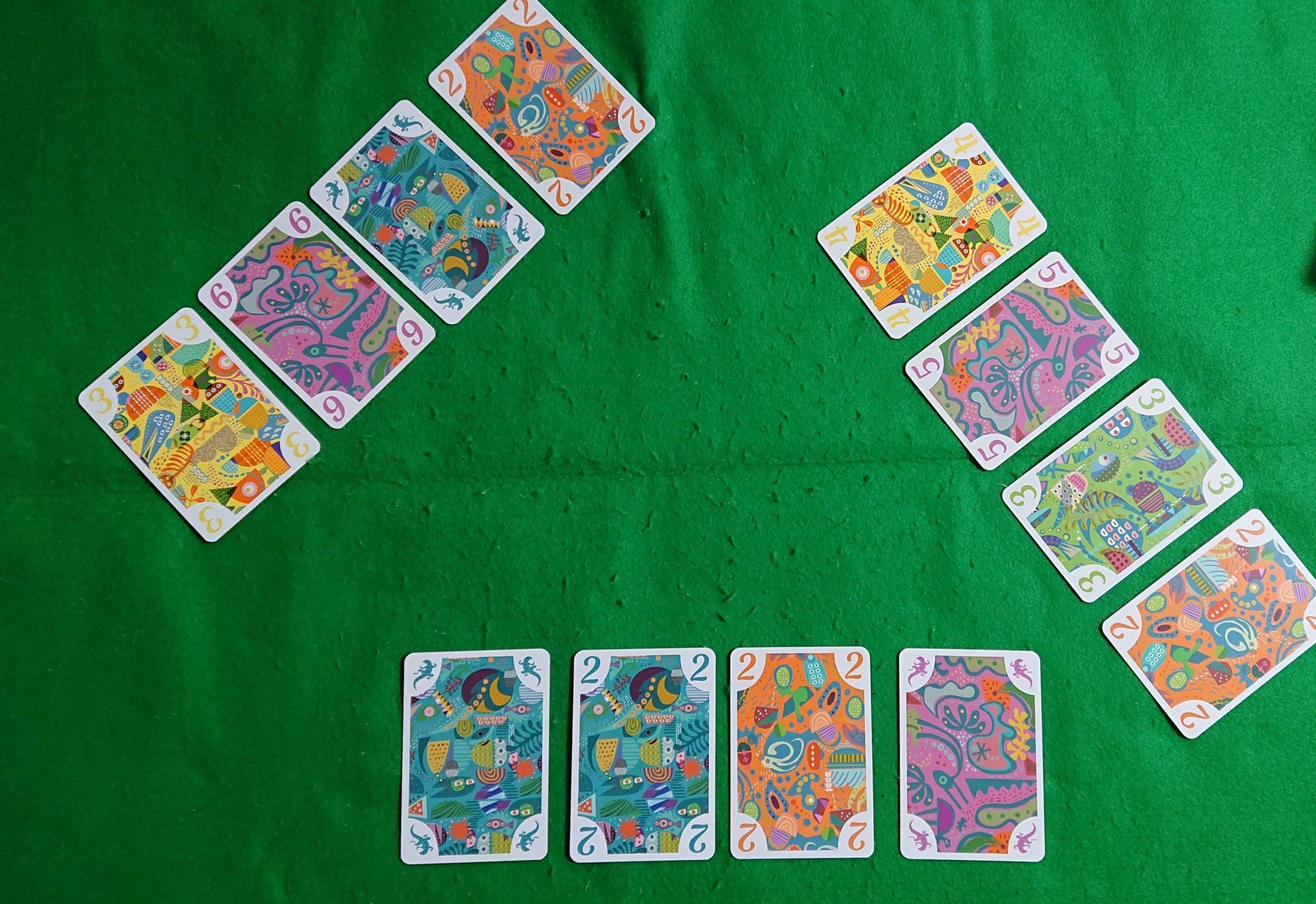 5211 ルール&レビュー 色のマジョリティーを取ろう! カードゲーム ボードゲーム