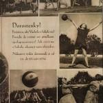 A la découverte du Sokol, le sport national en République tchèque