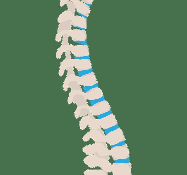 Problemzone Rücken – Wirbelsäulen-Instabilität