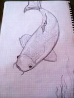 early koi sketch