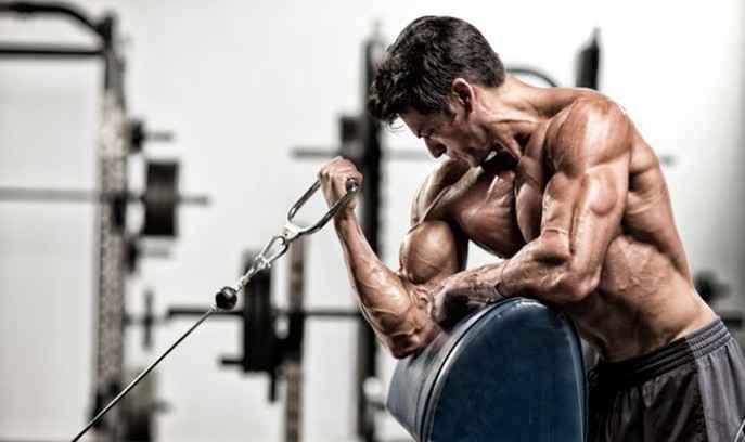 One Arm Dumbbell Preacher Curl Bodybuilding Wizard