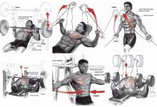 الأخطاء الشائعة في تمارين الصدر