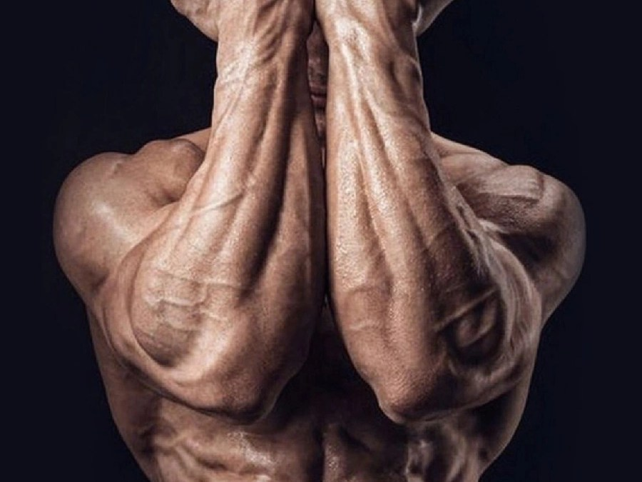 Ways to Build Muscle Fast