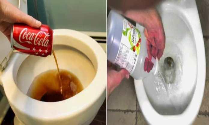 disinfect-toilet-put-garlic
