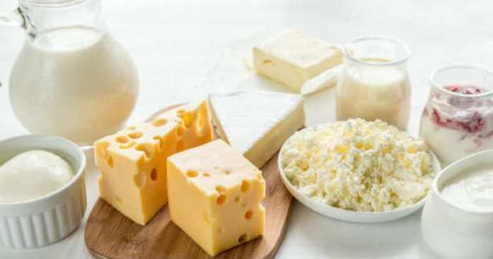 What happens to your body if you eat fermented foods every day?