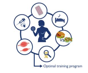 image_factors-optimal-program