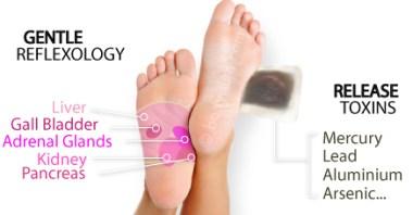 foot patch detox reflexology diagram