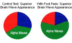 alpha brain waves pie chart