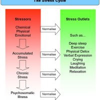 Why  Mental Stress Causes Psychosomatic Illnesses