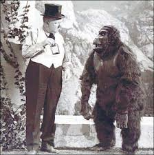 WC and Ape