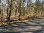 buurt-dikketruiendag-wandeling-2016-02-16 (18)